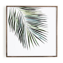 Palm Configuration Botanicals By Jess Engle