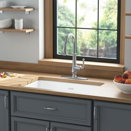 Delancey 30x19-inch Cast Iron Kitchen Sink  American Standard - Brilliant White