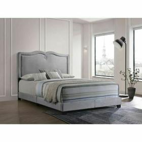 ACME Reuben Queen Bed - 26420Q - Gray Velvet