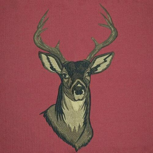 Buck Cranberry