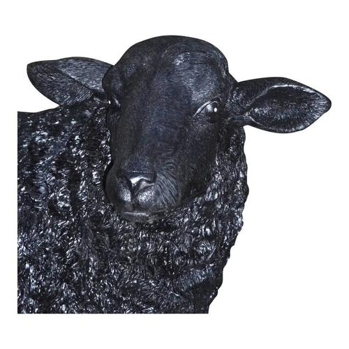 Baa Baa Black Sheep Statue