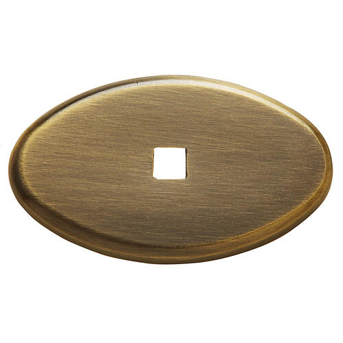 Baldwin - Satin Brass and Black Knob Back Plate