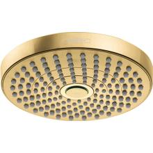 Brushed Gold Optic Showerhead 180 2-Jet, 1.8 GPM