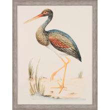 Water Bird II