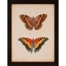 Antique Butterfly IV