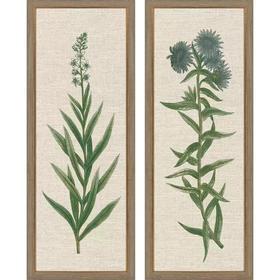 Blue Botanicals S/2