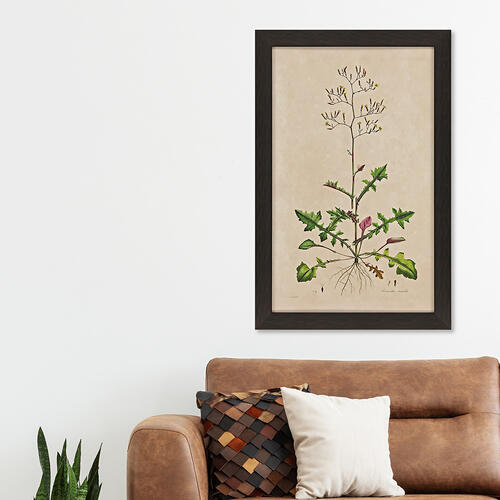 Wispy Floral II