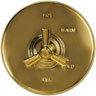 Forever Brass - PVD Tub Spout