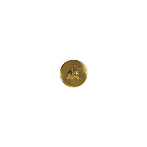 "Newport Brass - Forever Brass - PVD 42"" Ceiling Mount Arm"