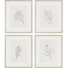 Product Image - Foliage S/4