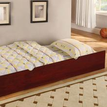 View Product - Omnus Trundle