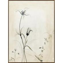 Product Image - Botanical I
