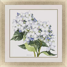 See Details - Full Bloom II