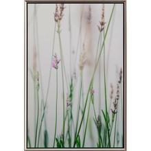 View Product - Summer Lavender II