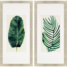 Palm Leaves II S/2