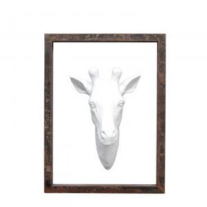 Giraffe Head in Frame