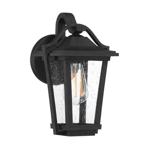 Quoizel - Darius Outdoor Lantern in Earth Black