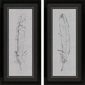 Feather Sketch S/2