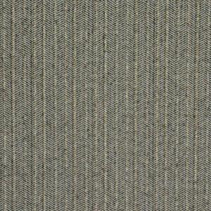 Marshfield - Gender Flannel