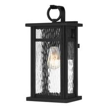 See Details - Moira Outdoor Lantern in Earth Black