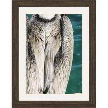 Pelican Sea 3