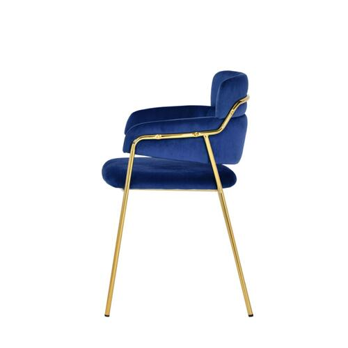 VIG Furniture - Modrest Tessa Modern Blue Velvet & Gold Dining Chair (Set of 2)