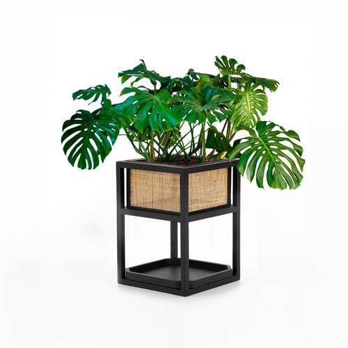 Sundara Reversible Cane Planter-square