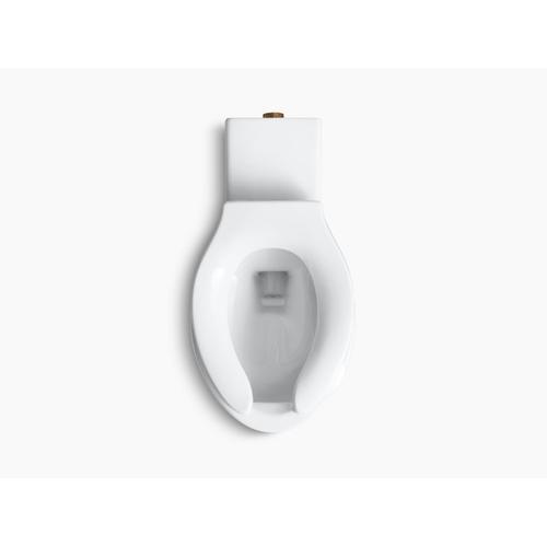 White Floor-mounted Rear Spud Flushometer Bowl