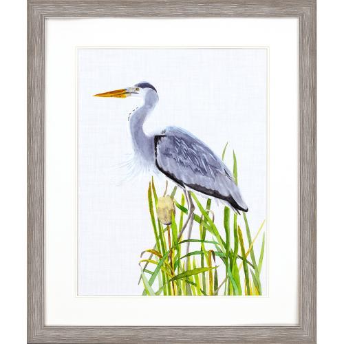 Product Image - Waterbirds II