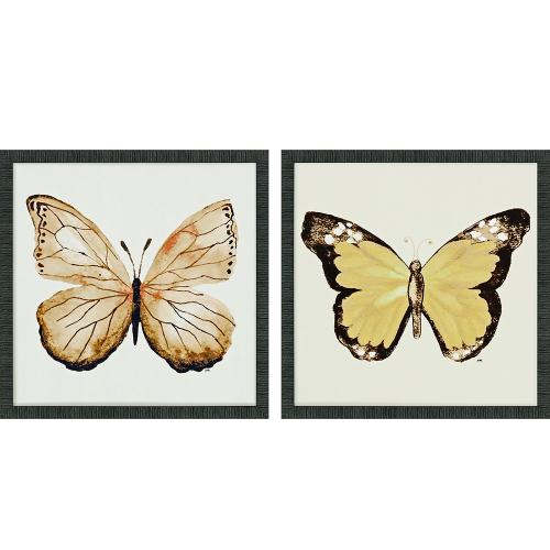 Butterfly Of Gold I S/2