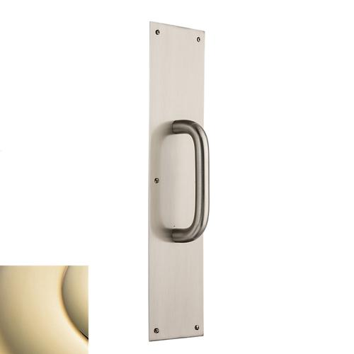Lifetime Polished Brass 2540 Pull x 2124 Pull Plate