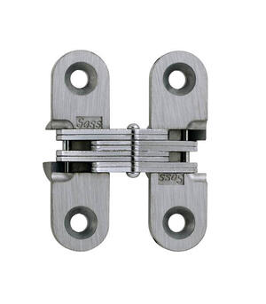 Model 203 Invisible Hinge Unplated Product Image