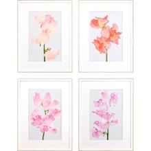 View Product - Lively Floral S/4