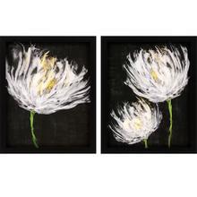 Product Image - Tulips On Black S/2
