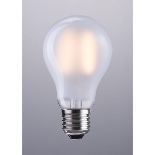 E26 A19 6w Led 100 X 60 Mm Frosted White