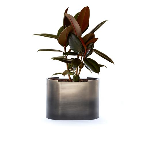 Antique Pewter Finish Cameron Ombre Planter