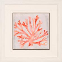 View Product - Watercolor Coral III