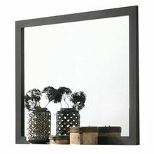 ACME Sheldon Mirror - 26204 - Gray