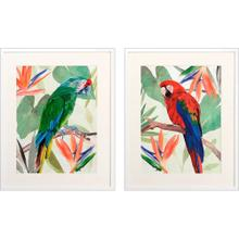 Product Image - Tropical Parrot S/2