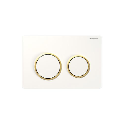 Omega20 Dual-flush plates for Omega series in-wall toilet systems White with polished gold accent Finish
