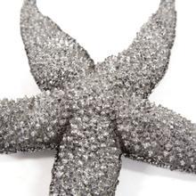 See Details - Deep Pewter Starfish - large