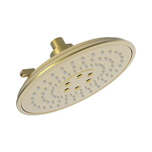 Polished Gold - PVD Luxnetic Multifunction Showerhead