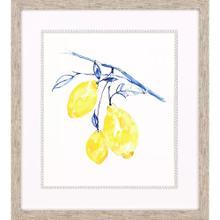 Watercolor Lemons II