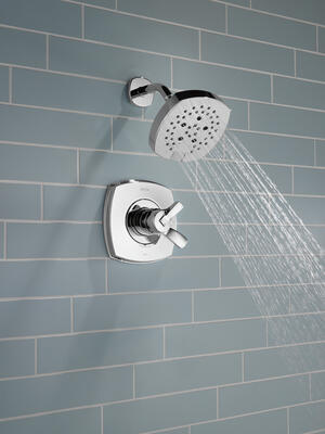 Chrome 17 Series Shower Only Product Image