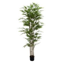 """See Details - PE POTTED BAMBOO TREE 38""""W, 77""""H"""