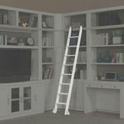 CATALINA Library Ladder (only to be used with Library Wall) Product Image