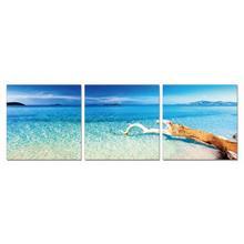 Modrest Driftwood 3-Panel Photo