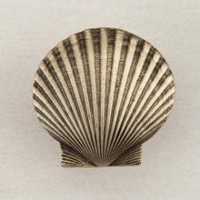 See Details - LARGE SCALLOP