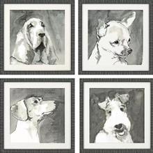 Product Image - Modern Dog S/4
