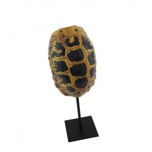 Turtle Shell Stand